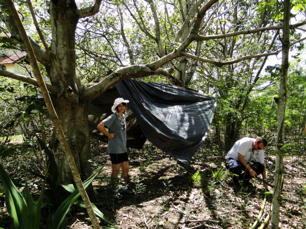 acampamento_bambu