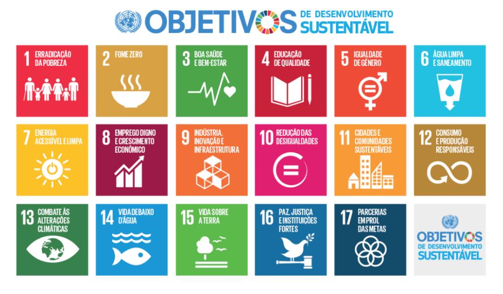 17 ODS da ONU